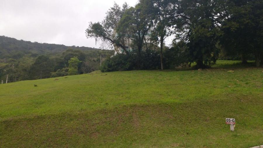 Terreno em Condomínio para Venda em Balneário Camboriú / SC no bairro BARRA